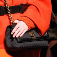 Bottega Veneta Delights with Fall 2017 Runway Bags for Both Men and Women
